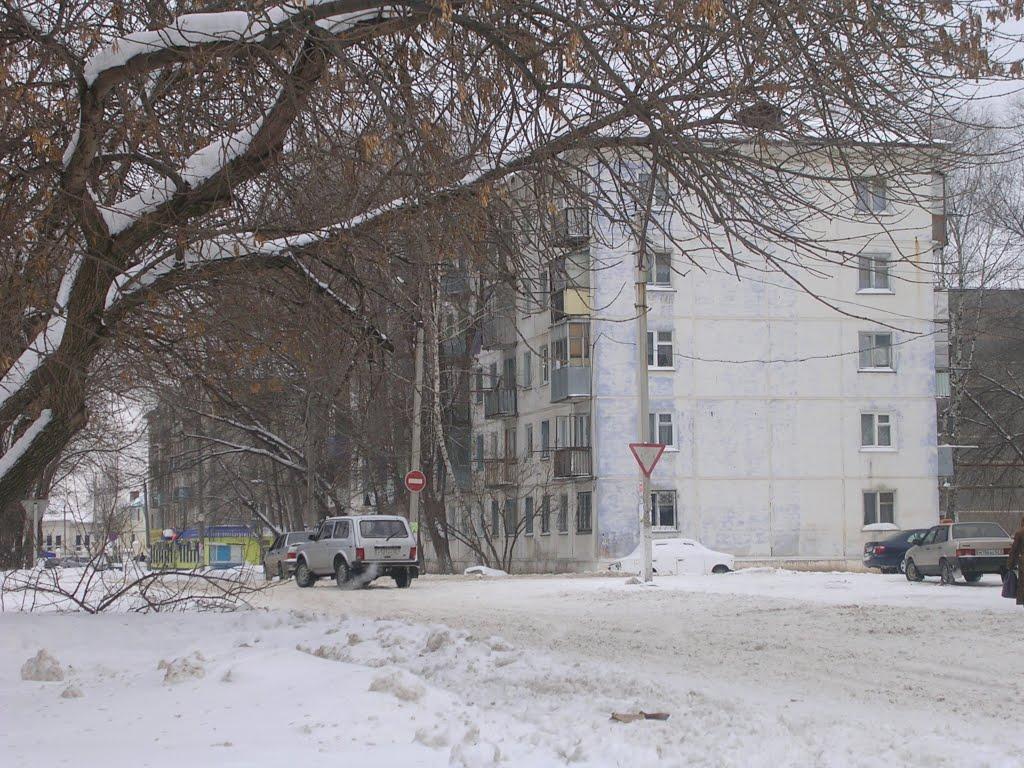 Город Кинель Самарской области